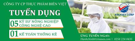 Công ty CP Biển Việt tuyển dụng